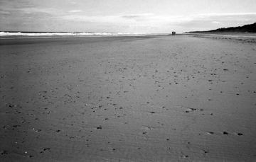 fp4party-14