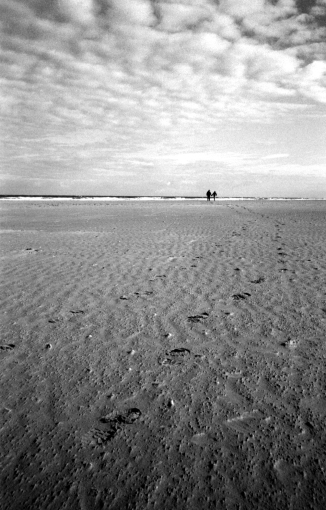 fp4party-15