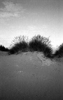 fp4party-9