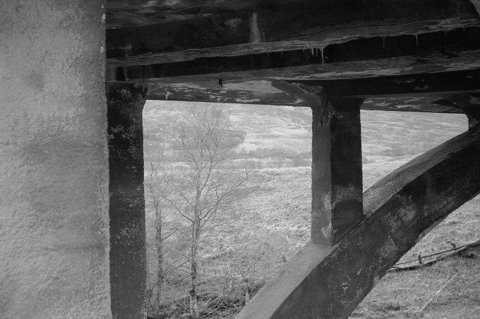 Leica FP4 6 204