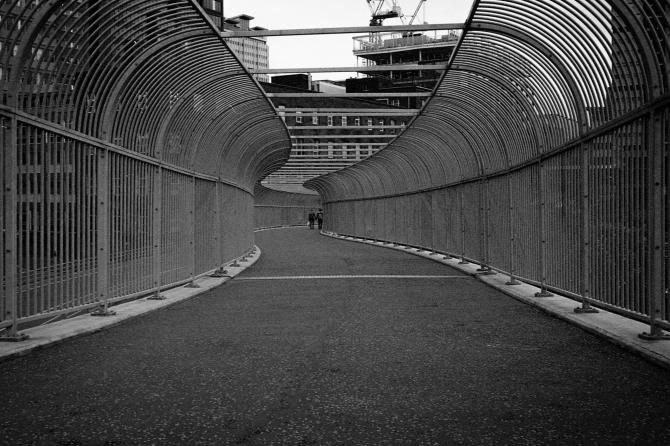 Leica Bergger 8 277