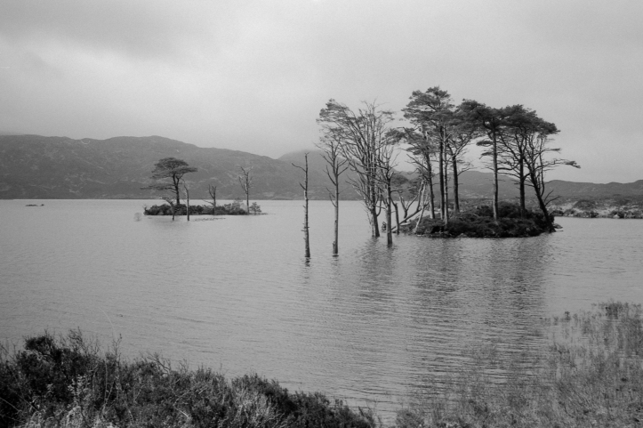 Leica FP4 6 218
