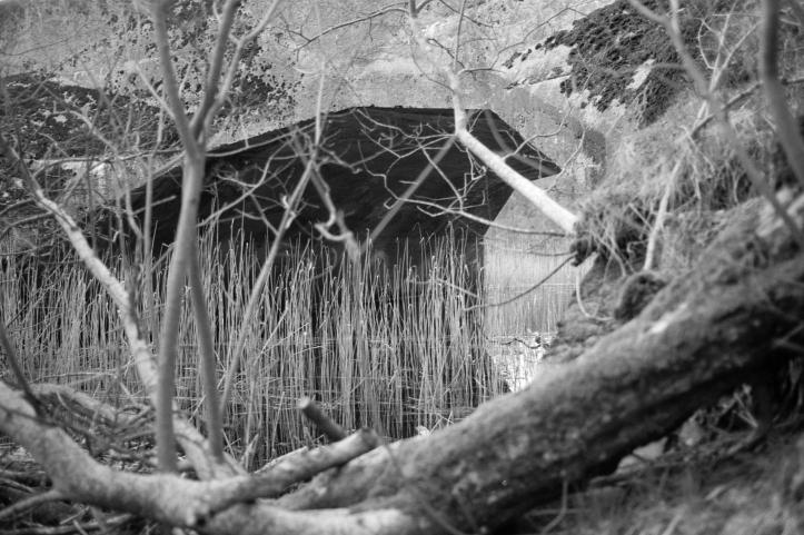 Leica FP4 7 237