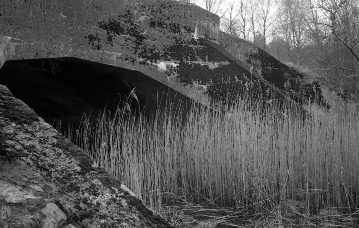Leica FP4 7 238