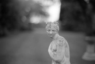 Leica M6 FP4113
