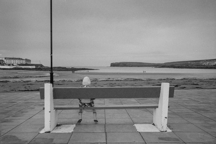 Leica M6 Rollei Retro 134