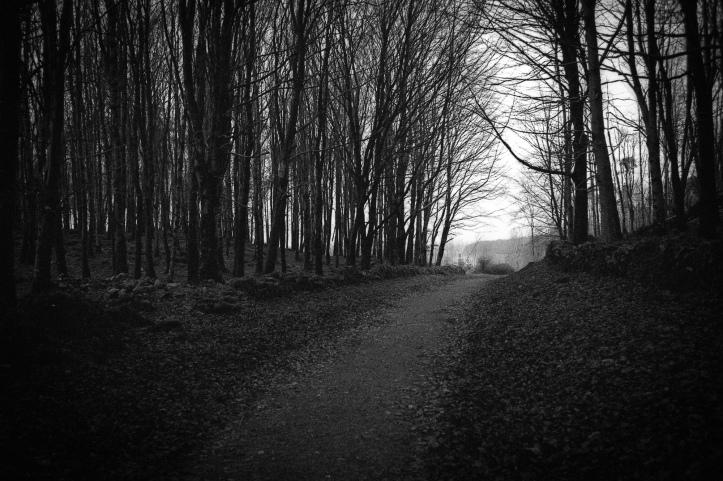 Leica M6 Rollei Retro 139